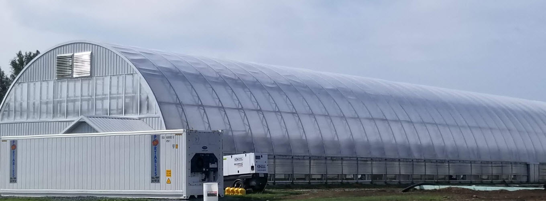Greenhouse Plastic SolaWrap-1