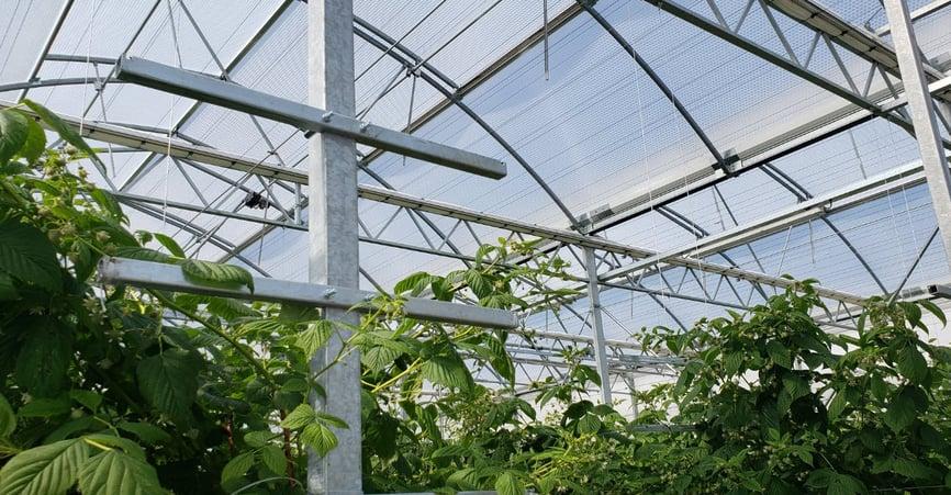 greenhouse plastic SolaWrap
