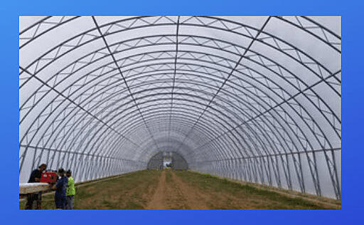 Inside SolaWrap Greenhouse