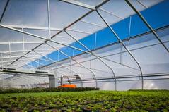 SolaWrap Greenhouse Plastic