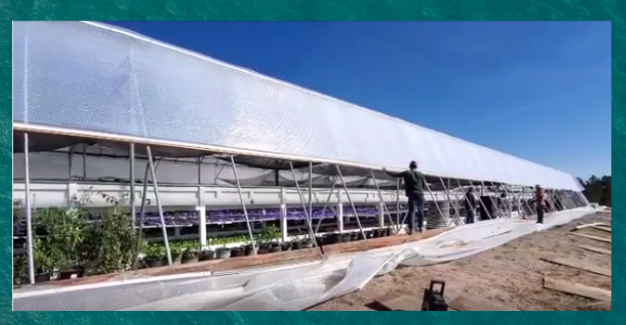 Greenhouse covering and greenhouse SolaWrap
